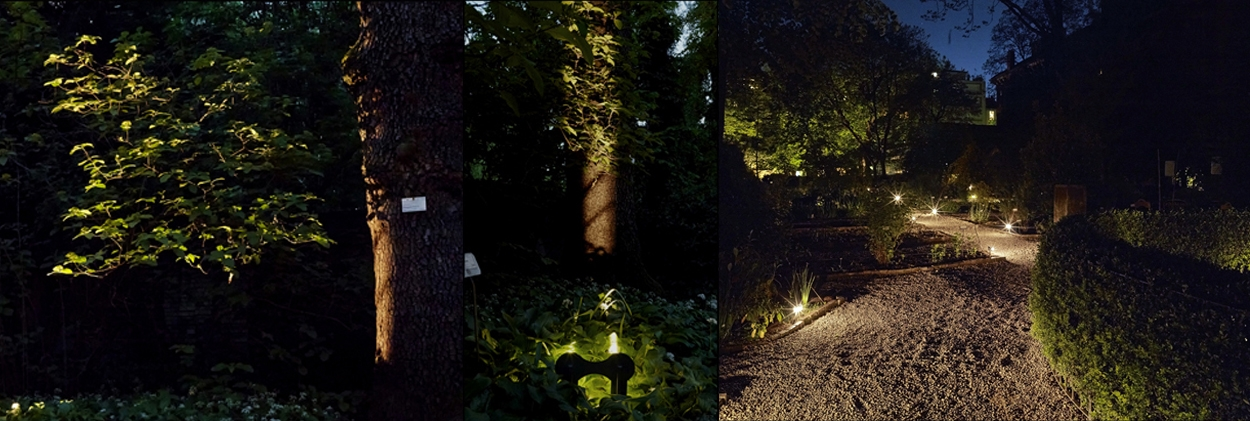 Milan Brera Orto Botanico project views