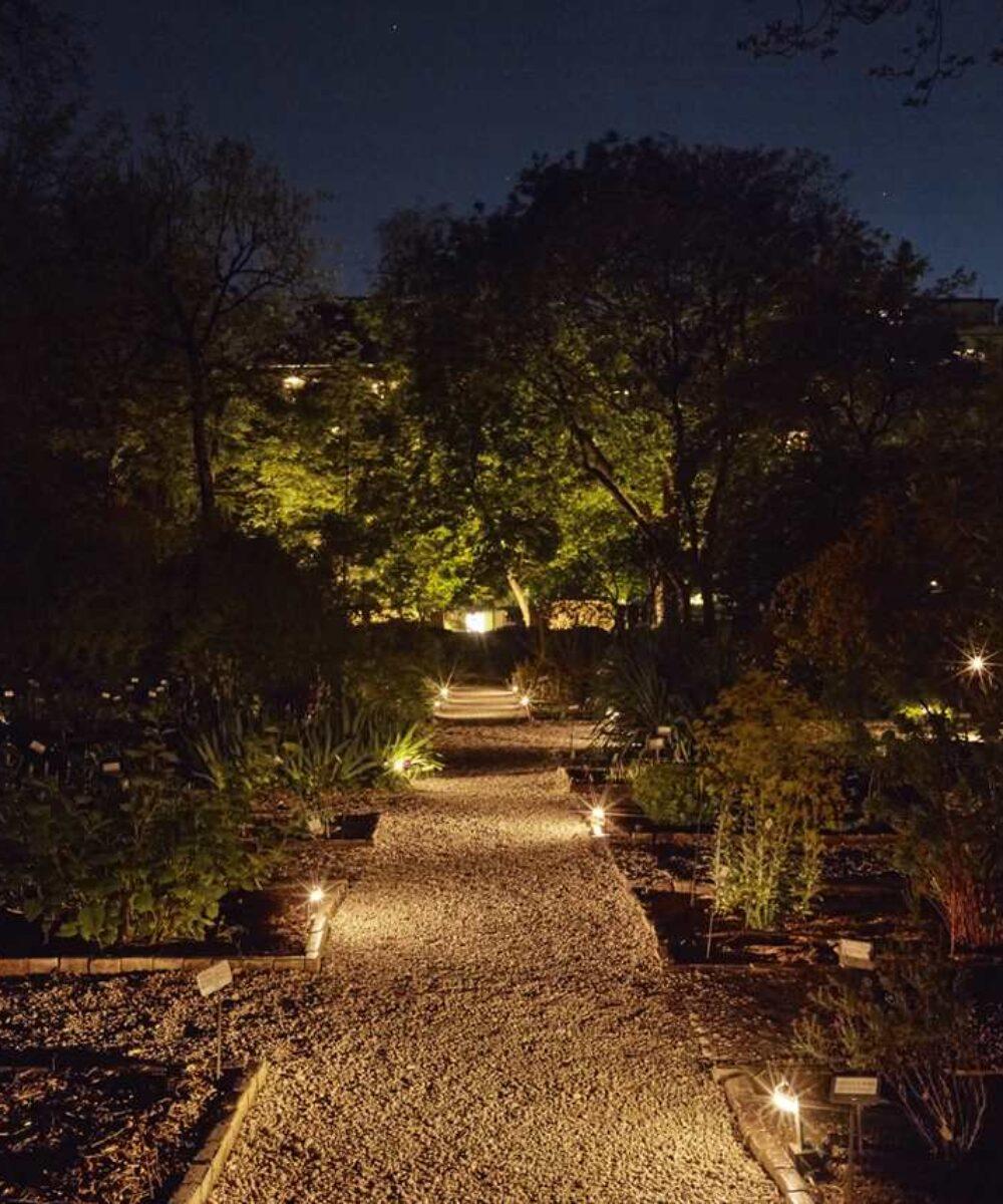 Brera Botanical Garden viale principale illuminato - design luce