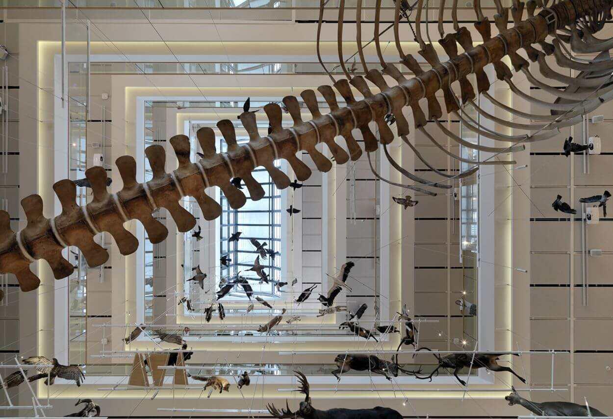 Italy Trento MUSE Science Museum - illuminazione musei