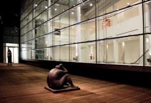 L'illuminazione notturna nella Fondazione Costantini